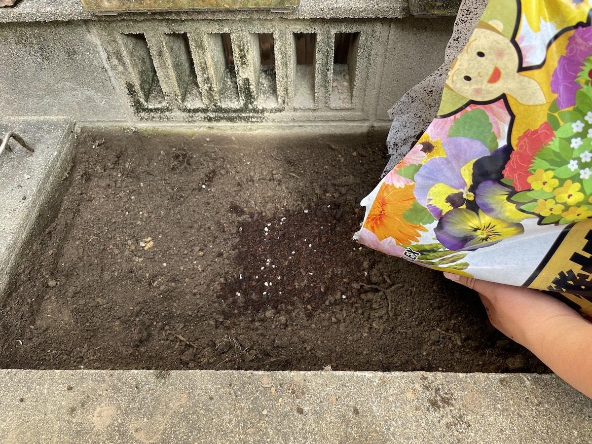 玉竜マットの穴へ培養土を入れる