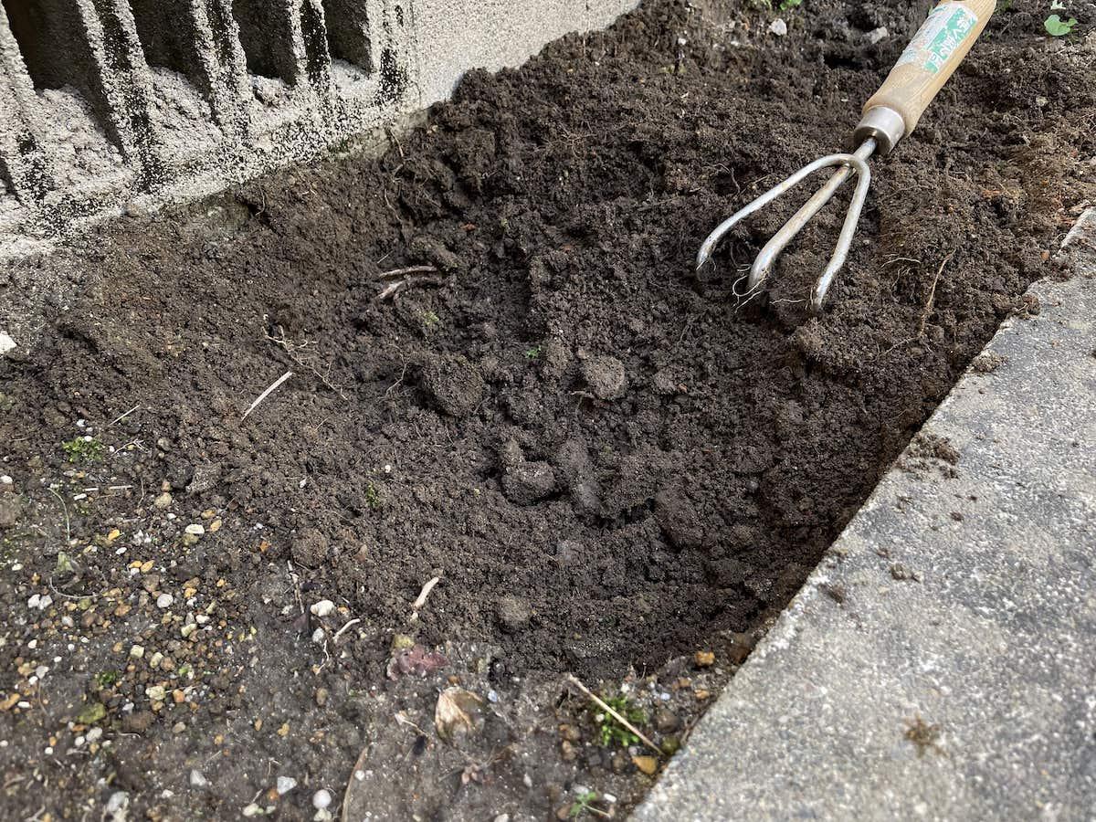 タマリュウの土づくり(耕起)