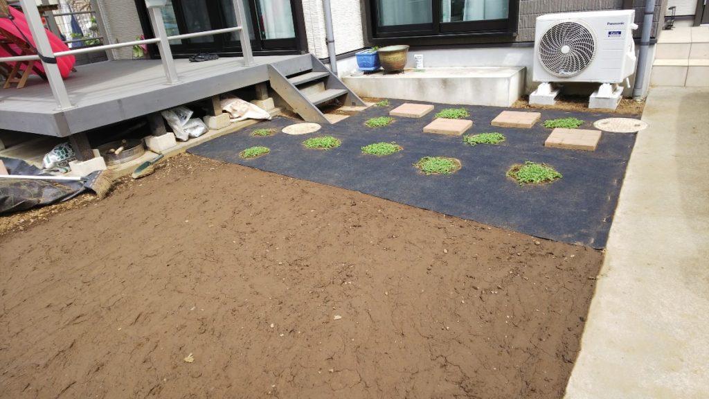 クラピアを植えたお庭の写真