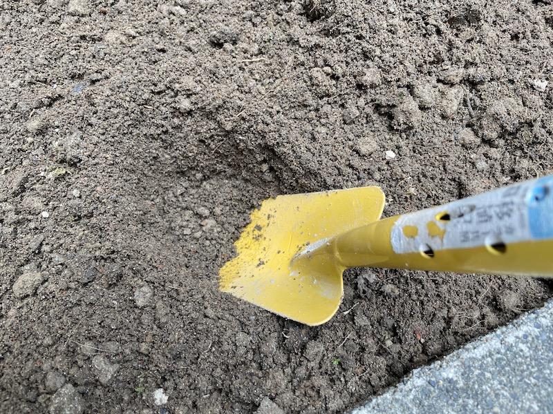 芝桜(シバザクラ)を植える穴を掘る