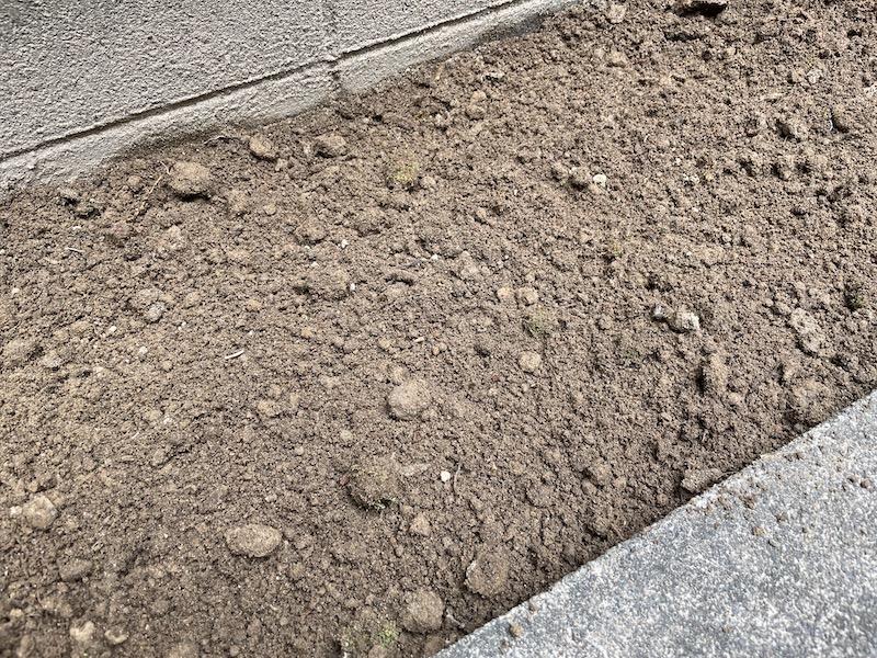 芝桜(シバザクラ)植え付け前の整地