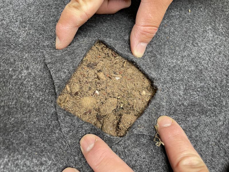 芝桜(シバザクラ)を植える穴