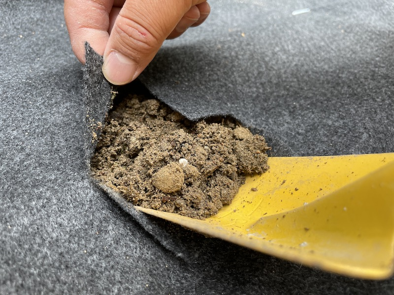 芝桜(シバザクラ)を入れる穴を掘る