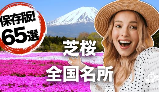 【2021年度最新全国版】絶景が楽しめる芝桜の名所65選【写真付き】